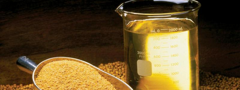 Soybean: inter-market spread tra farina e olio