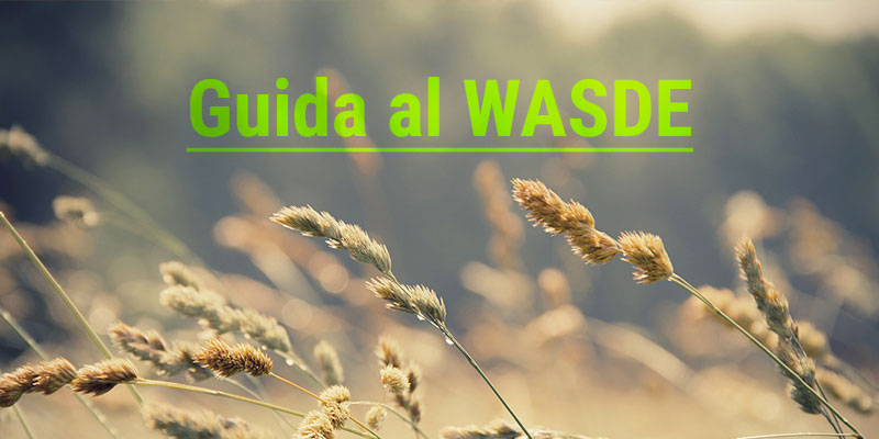 Guida all'analisi del report WASDE