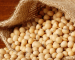 Soybean: focus futures Novembre 2015