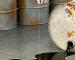 Petrolio: quale sarà il suo futuro?
