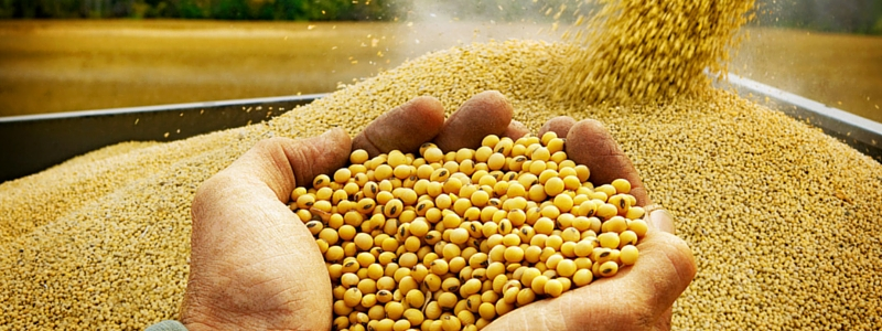 Soybean crush: Commodity Spread Multileg