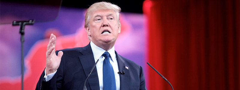 Donald Trump: secondo cigno nero