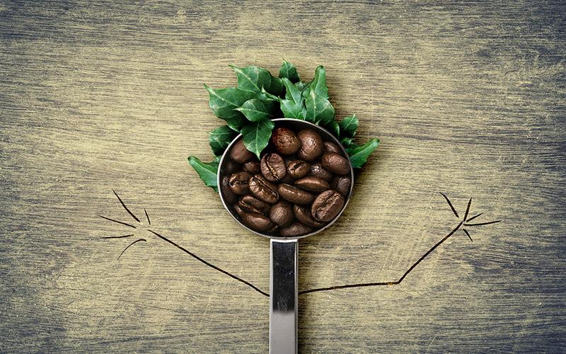 quotazione caffè commodity