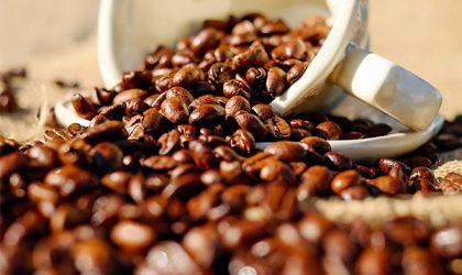 Perché il prezzo del caffè continua a scendere?