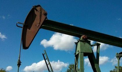 Prezzo del petrolio negativo: previsioni per il 2020