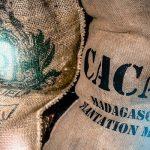 Future cacao analisi e scheda